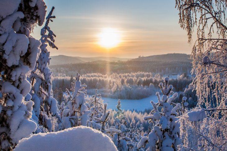 Talvinen näkymä, Markus Sjöberg